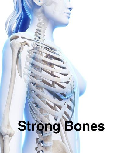 strongbones-annotate